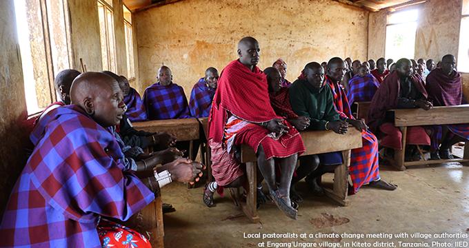 tanzania goat aid case study
