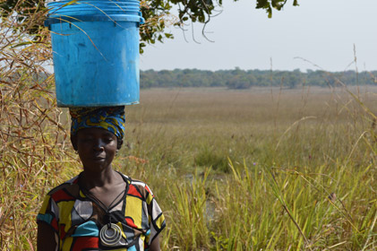 Christine Chama Luwingu District watering community vegetables
