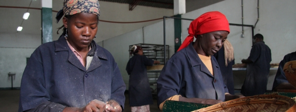 Ruth Cosa dehusking cashew nuts at the MCM factory in Macia, Mozambique.